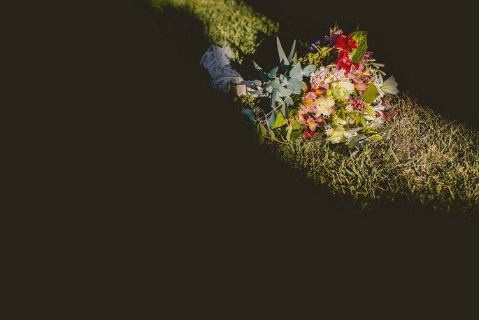 Deborah Dantzoff Fotografía