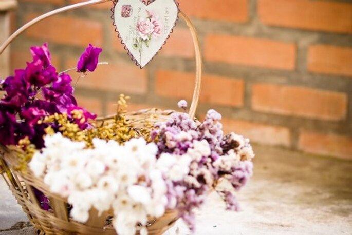 Combinación de los colores de las flores. Foto: Moniky Alves.