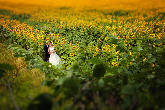 Foto: Baimiro via Shutterstock