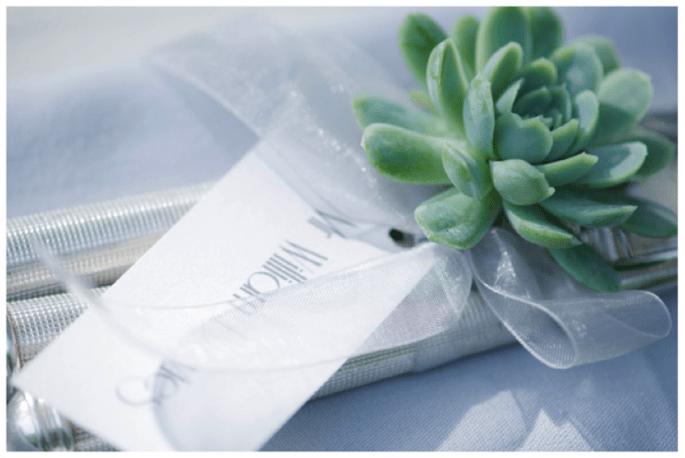 Decoración de boda con suculentas - Foto Fiona Kelly Photography