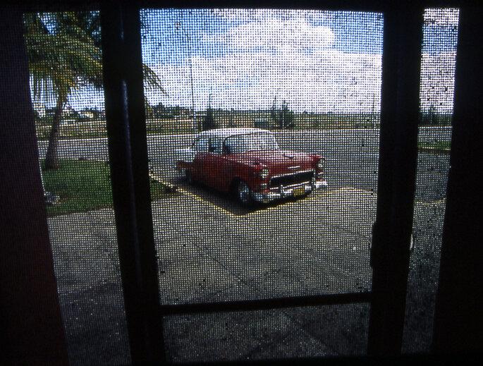 El cliché cubano: un carro antiguo, palmeras y el cielo azul. Foto: Wikimedia Commons - Henrik Kotowski