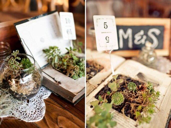 Plantas carnosas para tu boda - Foto: Green Wedding Shoes