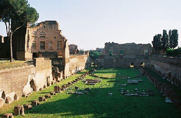 Vous pourrez découvrir la beauté du Palatino