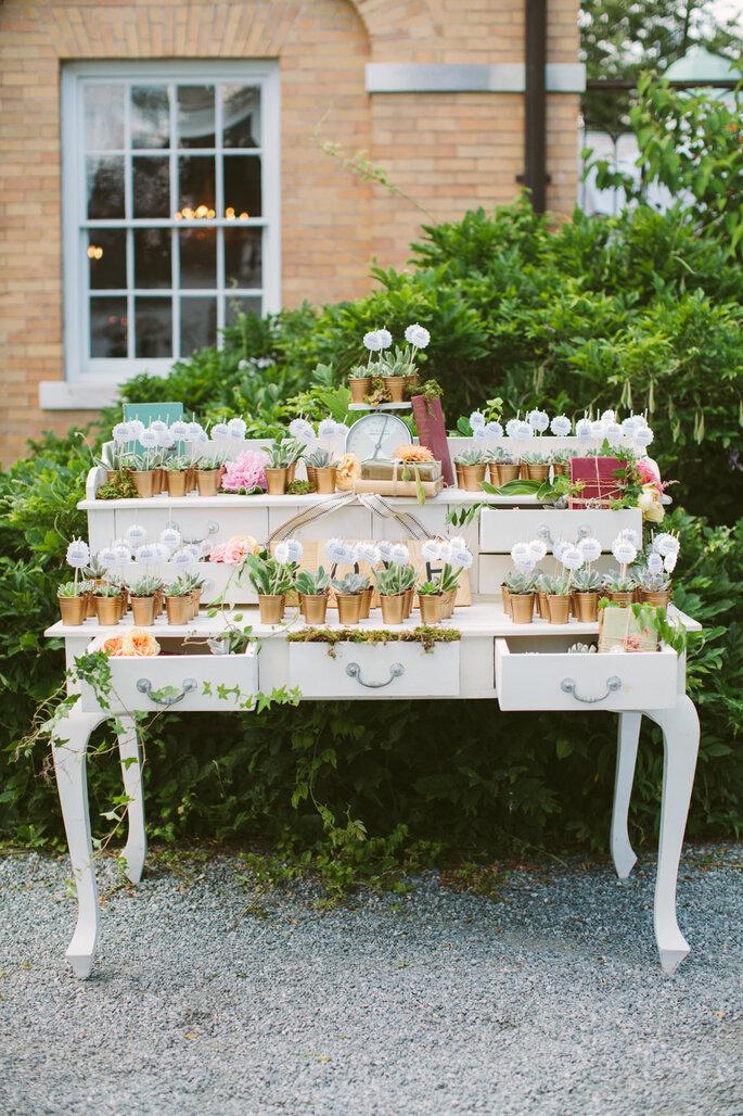 Incorpora suculentas en la decoración - Rebecca Arthurs