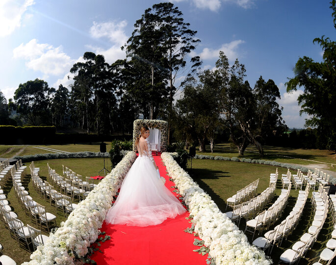 David Betancur Wedding Planner & Floral Designer