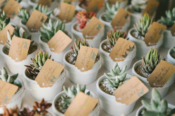 Una boda exótica decorada con cactus y suculentas - Emily Blake Photography