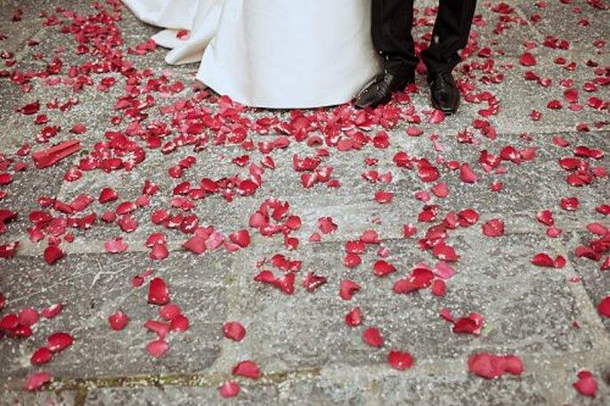 Rosen sind ein Sinnbild für die Liebe! - Foto: Josep Álfaro