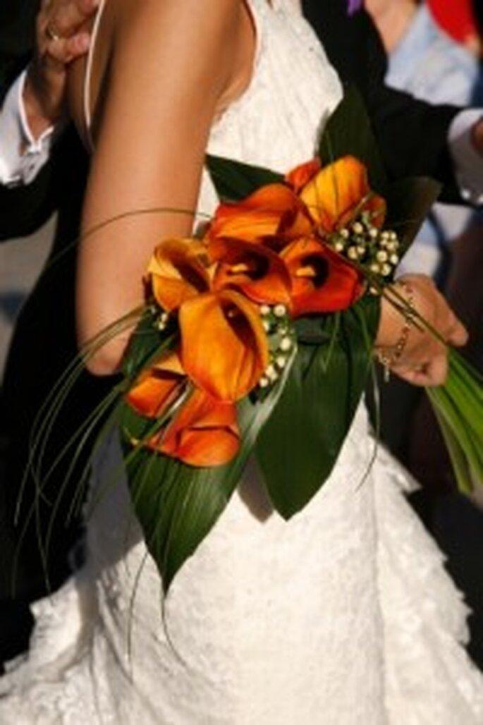 Calas en colores cálidos: hermoso contraste de verde y naranja