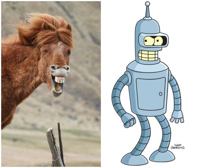 cavallo felice e Bender Rodriguez
