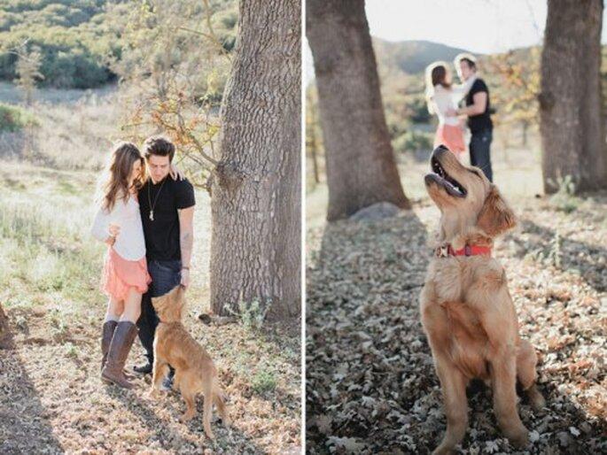 Tu mascota en tu sesión de fotos de boda - Fotos: Green Wedding Shoes