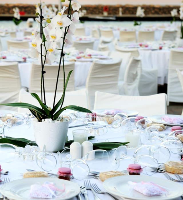 lieux de rception pour mariage alsace - Domaine Viticole Mariage Alsace