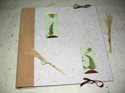 La cigüeña de papel, libros de firma