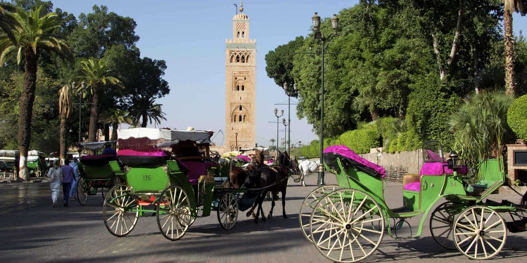 Flitterwochen in Marrakesch