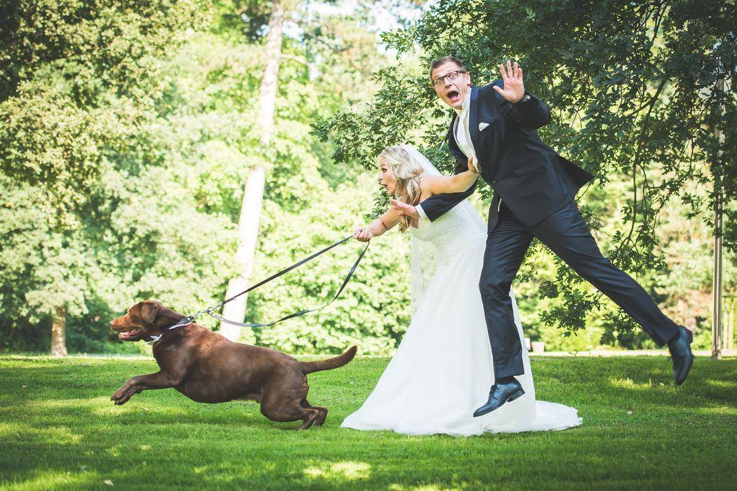 Beispiel: Brautpaarshooting mit Hund una Action, Foto: Hochzeitsfotografie Thomas Göbert
