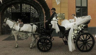 carruaje colonial