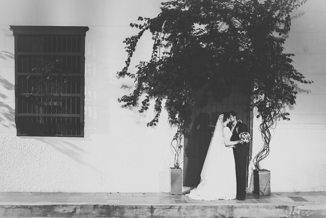 Camilo Álvarez Fotógrafo