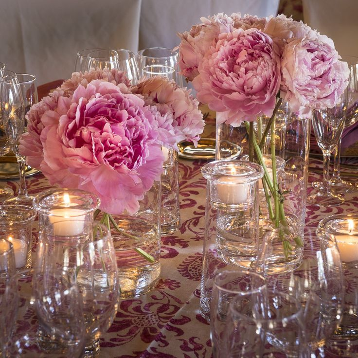 Centros de peonias rosas