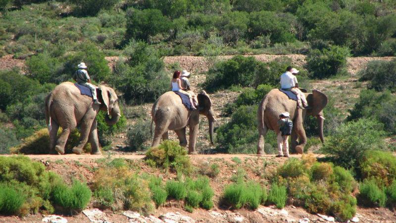 Beispiel: Einzigartige Erlebnisse in Afrika, Foto: Madiba.de.