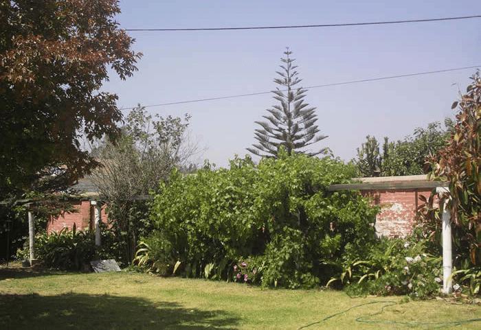 Casona de Quipué