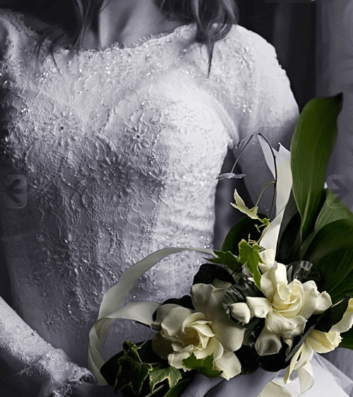 Foto: Speaking Roses