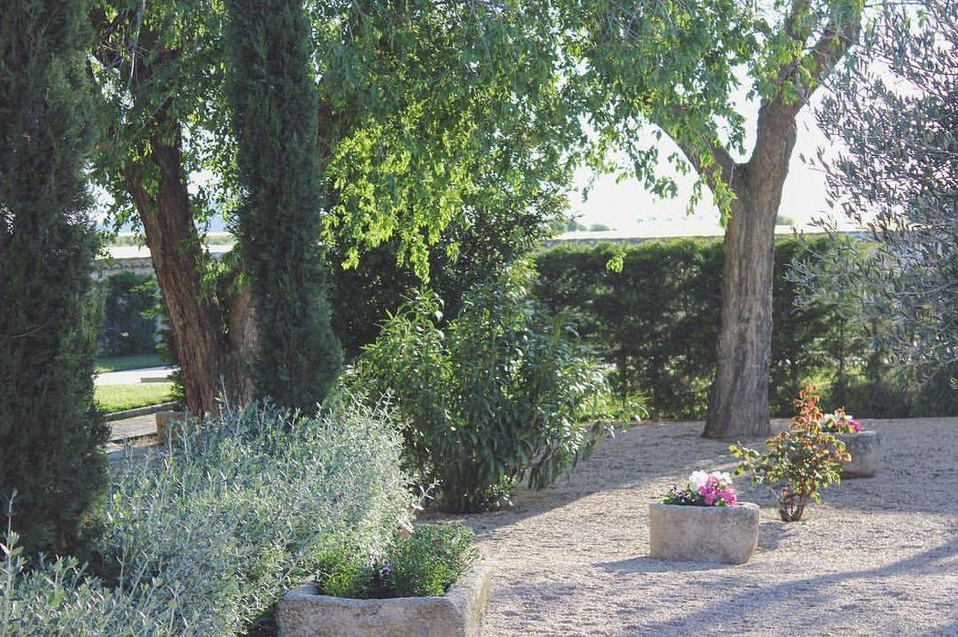 Primavera en nuestros jardines