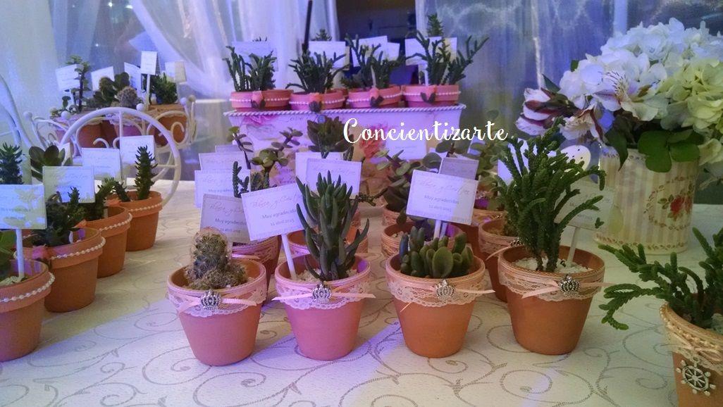 Detalle de recuerdos con plantas suculentas, decoradas en marfil y coral. Recuerdo de boda, shower.
