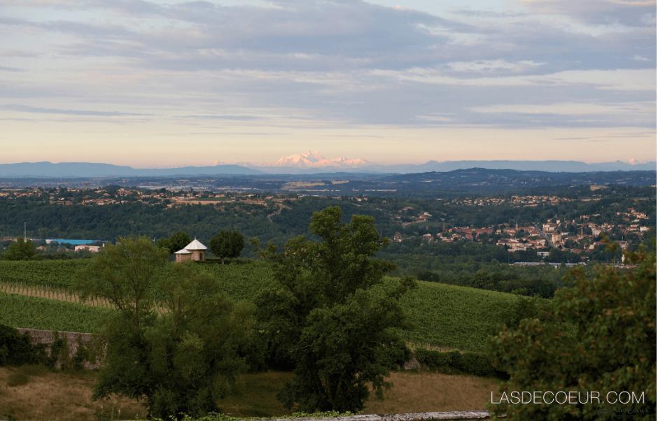 Une vue imprenable sur la vallée du Rhône et jusqu'au Mont Blanc