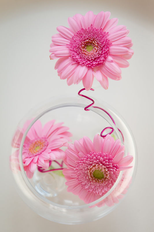 Décoration par A Fleur et à Mesure, Thermes de Biarritz, crédit photo Studio PLP