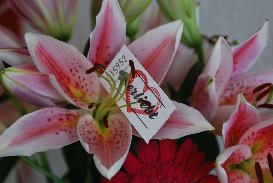 Beispiel: Blumen für die Tischdekoration, Foto: Feel White.