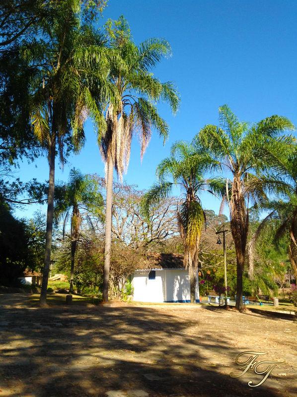 Fazenda Tucunduva