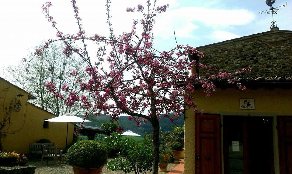 Relais Poggio Borgoni