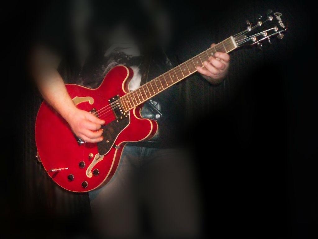 Beispiel: Livemusik für Ihre Hochzeitsfeier, Foto: Internet.