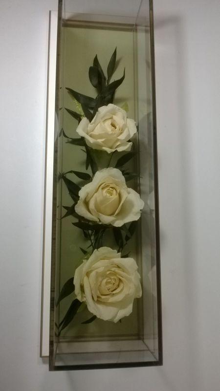 Kompozycja z trzech kremowych róż w podłużnej gablocie