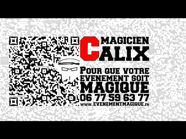 Calix Magicien à Lyon  0677596377
