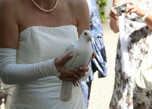 Beispiel: Braut mit Taube, Foto: Hochzeitstauben Michaela Kohl.
