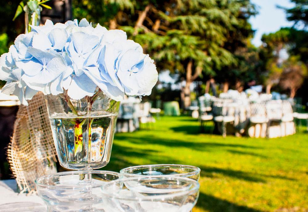 Detalle de hortensias azules