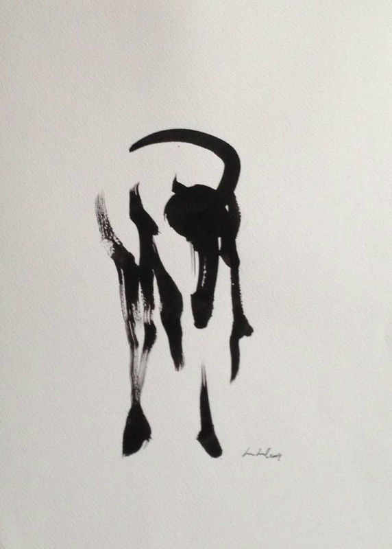 Foto: Drawing Box