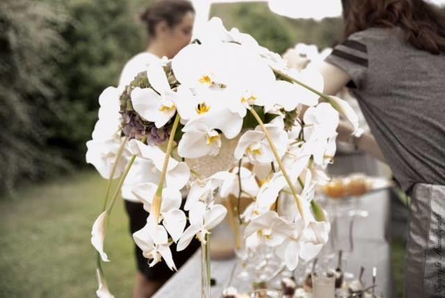 Vase martini et orchidées/Estelle Leclerc