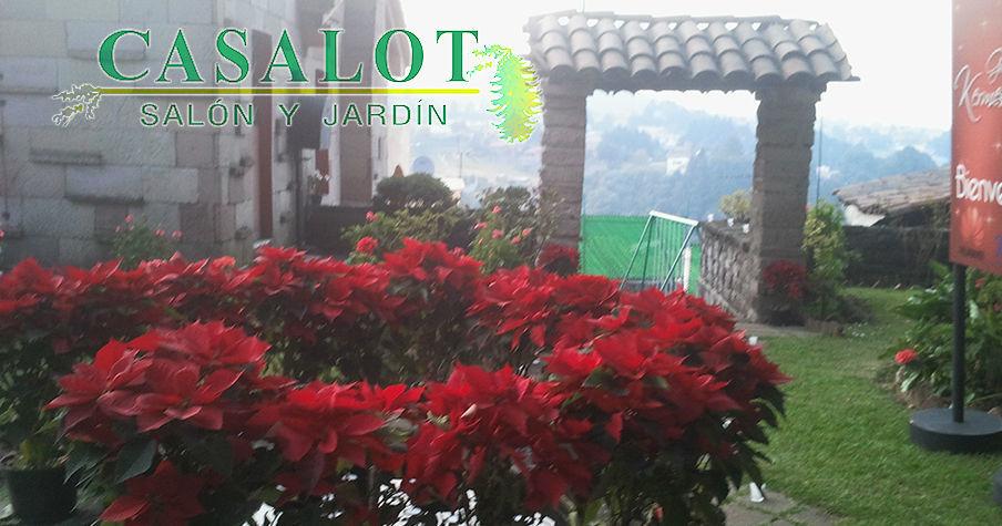 Casalot Salón y Jardín