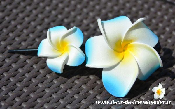 Pinces pélican de 12 cm ornées de 2 fleurs de frangipanier de 4 et 6 cm. Nombreux coloris disponibles.