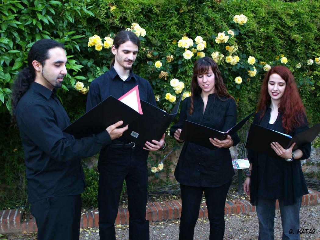 Nuestro cuarteto de voces es uno de los grupos más demandados por su gran calidad y versatilidad. Puede actuar a capella o acompañado por un pianista profesional.