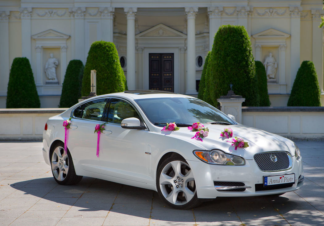 Jaguar XF biała perła.