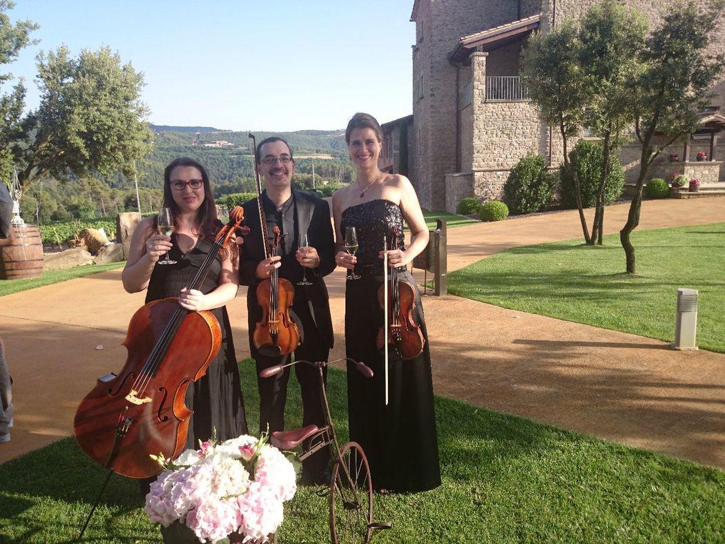Trio : Dos violines y violonchelo