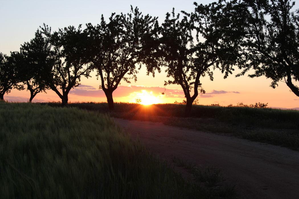 Espectaculares puestas de sol