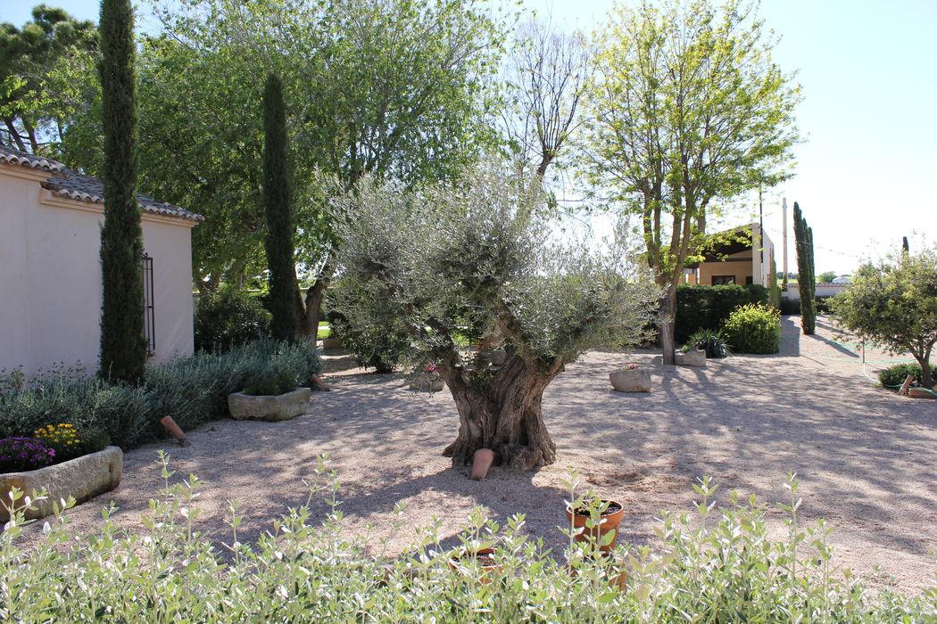 Jardines sin decorar