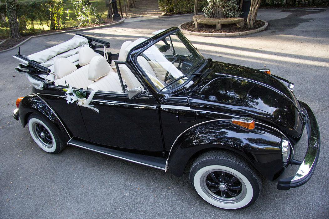 BT006 1979 VW Beetle Negro