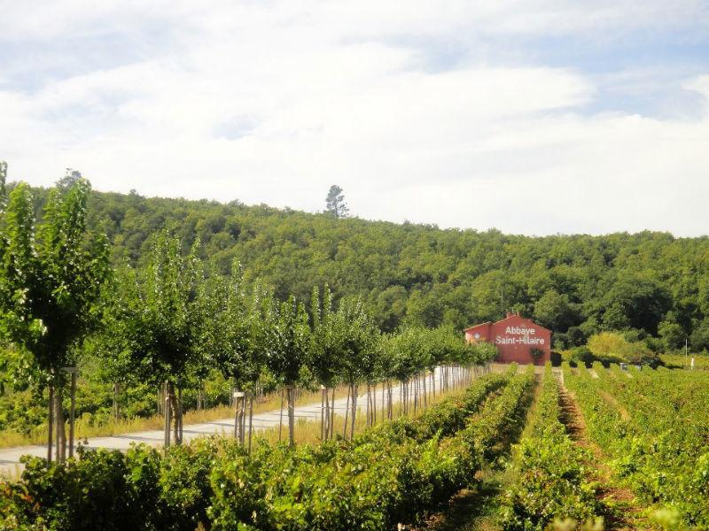 Terres de Saint Hilaire