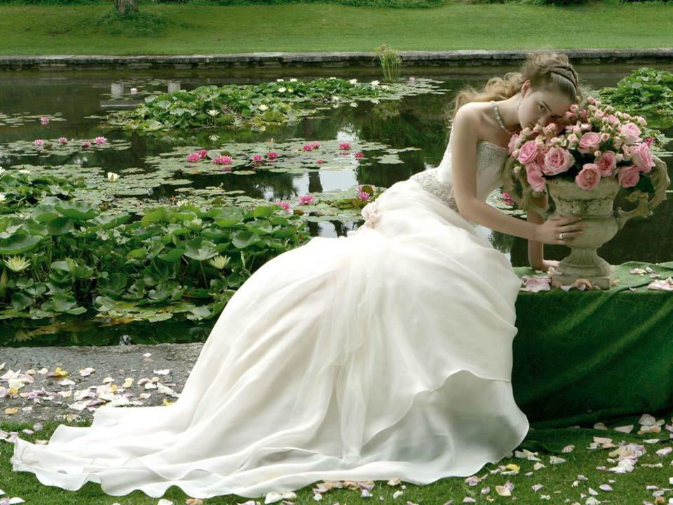 Beispiel: Wunderschöne Brautkleider, Foto: Petra Pabst.