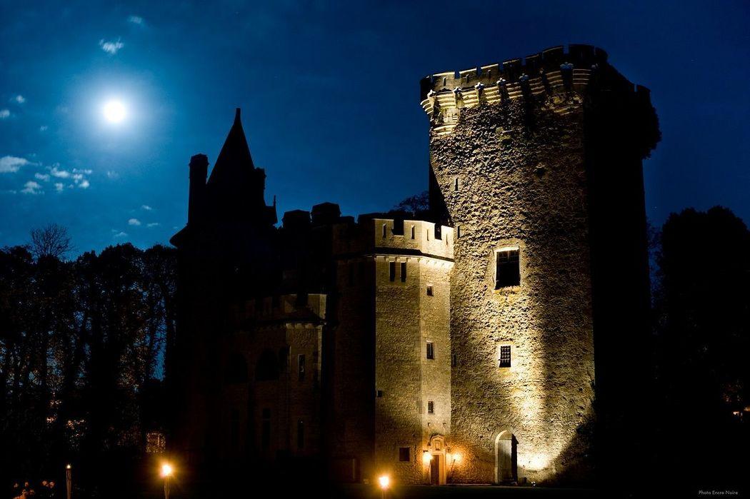 Château et Donjon Médiéval de Saint-loup sur Thouet