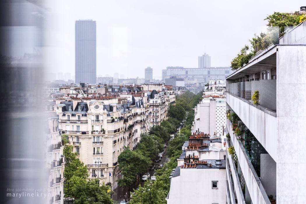 Vue depuis le salon Trocadéro